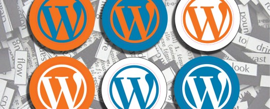 Website issue with WordPress – No panic!
